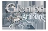 Gleniph Arabians